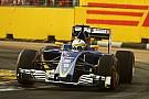Formula 1 Sauber confident 2017 hopes not hurt by lack of development