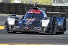 IMSA Rebellion and Corvette lead first day at Roar
