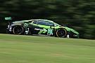 IMSA Antinucci to make Petit Le Mans debut in Lamborghini