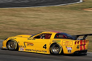 Trans-Am Trans-Am Sebring spotlight - Tony Ave