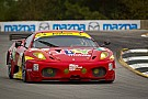 AF Corse Racing Petit Le Mans qualifying report