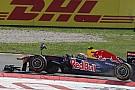Spanish fan admits to having Webber's Monza wing