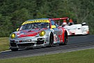Flying Lizard on Pole at Road America
