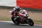 Badovini and Team SBK Ducati Alstare celebrate pole position at the Nurburgring