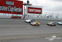 The start: Elliott Sadler and Ryan Newman leads the field to the green