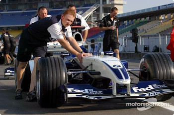 Williams team member