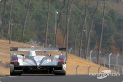 #5 Audi Sport Japan Team Goh Audi R8: Tom Kristensen, Seiji Ara