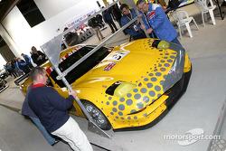 #31 RJ Cole Corvette C5