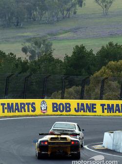 #20 Mark Coffey Racing Lamborghini Diablo GTR Coupe: Paul Stokell, Allan Simonsen, Luke Youlden, Peter Hackett