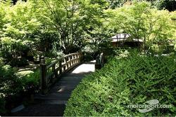 Beautiful garden in Portland