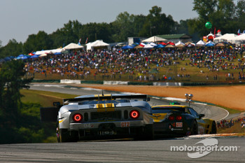 #04 Robertson Racing Doran Design Ford GT: David Murry, Rob Bell, Anthony Lazzaro
