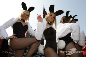 Playboy bunnies in the paddock