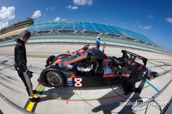 #8 Starworks Motorsport Ford Riley: Ryan Dalziel, Mike Forest