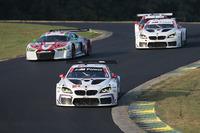 IMSA Fotos - #25 BMW Team RLL, BMW M6 GTLM: Bill Auberlen, Dirk Werner