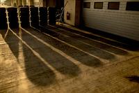 GP3 Фото - Шины Pirelli