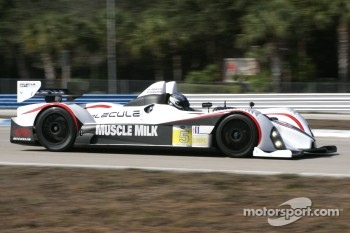 #5 Muscle Milk Pickett Racing Oreca FLM09: Michael Guasch, Memo Gidley