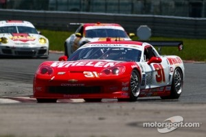 #31 Marsh Racing Whelen Engineering Chevrolet Corvette: Eric Curran, Boris Said