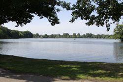 The lake behind the paddock