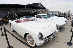 Corvettes on display