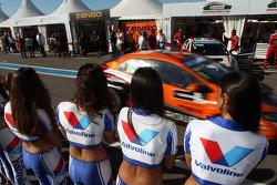 Grid Girls and Norbert Michelisz, Honda Civic, Zengo Motorsport