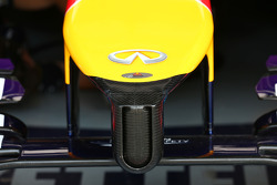 Red Bull Racing RB10 nosecone detail