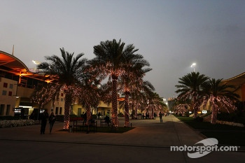 The paddock at night