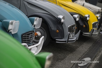 A lineup of Citroën 2CV