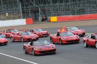 The Ferrari Collection