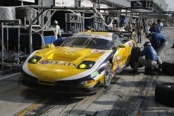 Pitstop for #73 Luc Alphand Aventures Corvette C5-R: Jean-Luc Blanchemain, Sébastien Dumez, Vincent Vosse