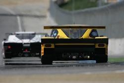 #77 Feeds The Need Doran Racing Ford Doran: Memo Gidley, Guy Cosmo