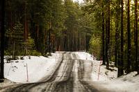 WRC Foto - Parte del tracciato