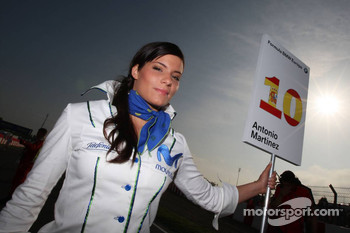 Grid girl of Antonio Martinez, Fortec Motorsport