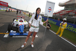 Grid girl of Jack Harvey, Fortec Motorsport