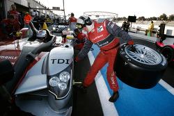 Pit stop practice for #7 Audi Sport Team Joest Audi R15 TDI: Rinaldo Capello, Allan McNish