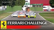 Ferrari Challenge Europe Coppa Shell - Imola 2015: Race 1
