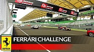 Challenge APAC – Wyatt, Jin and Wang win in Sepang