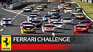 Ferrari Challenge APAC, Fuji 2016 - Highlights Race 2