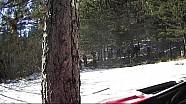 WRC-蒙特卡洛拉力赛-哈尼宁第五赛段事故