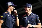 Formule 1 Webber : Rester chez Red Bull, la meilleure option pour Ricciardo