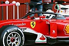 Surtees urges Hamilton to rethink Halo stance