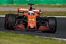 Ufficiale: Fernando Alonso ha rinnovato con la McLaren