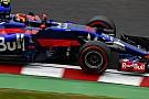 Hartley már a Toro Rosso F1-es szerelésében feszít