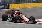 Formel 1 Stoffel Vandoorne: McLaren in der Formel 1 war anfangs ein Alonso-Auto