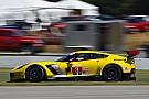 IMSA Lime Rock IMSA: Corvette and Audi lead second practice