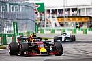 "Red Bull: Verstappen silenciou ""críticas estúpidas"""