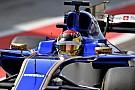 Formula 1 Wehrlein defends Sauber's handling of injury news