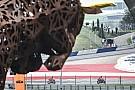MotoGP 2017 in Spielberg: Ergebnis, Qualifying