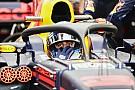 Ricciardo: fãs irão se acostumar com o halo na F1
