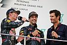 Формула 1 Уэббер назвал главной проблемой Ферстаппена манеру готовиться к гонкам