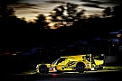 IMSA Simpson, Goikhberg to return with JDC-Miller
